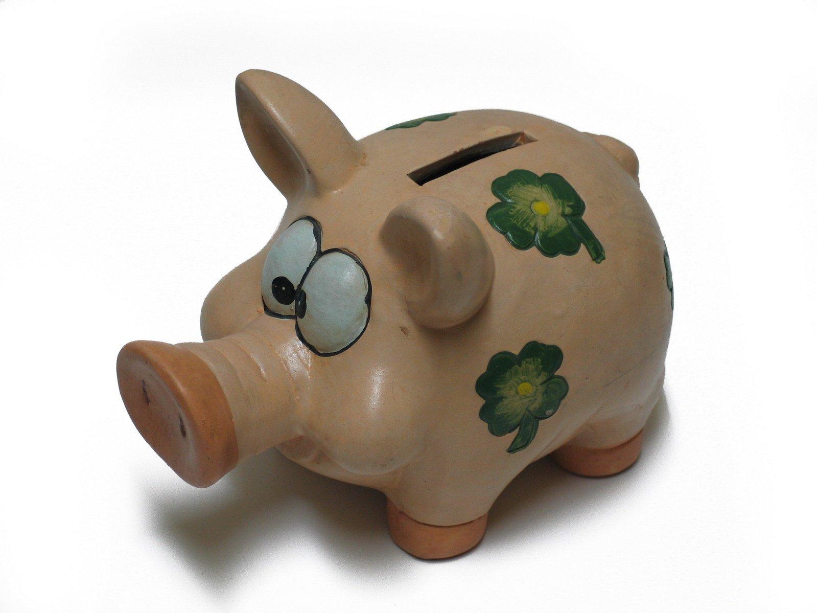 pig,animal,toy,money