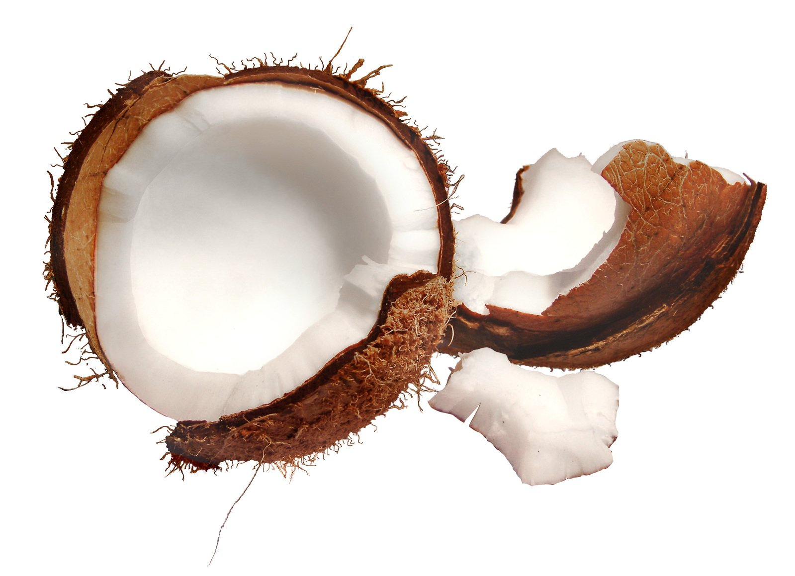 фрукты кокос загрузить