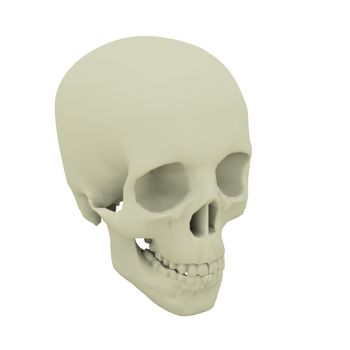 Free skull 3d 1 Stock Photo - FreeImages com