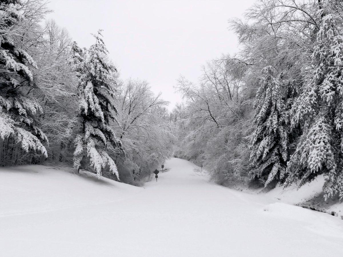 free winter scenes stock photo freeimages com