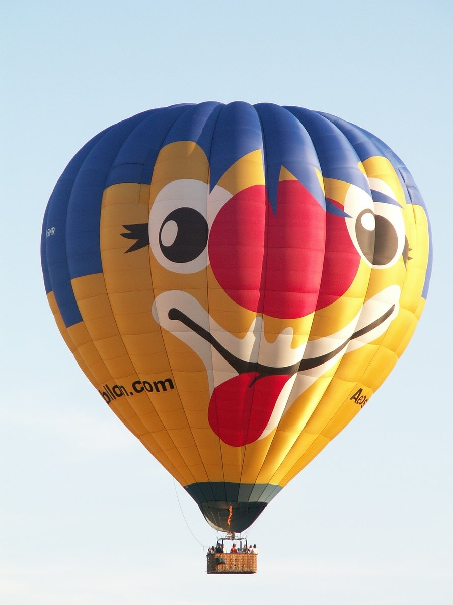 Free Hot air balloon Stock Photo - FreeImages.com