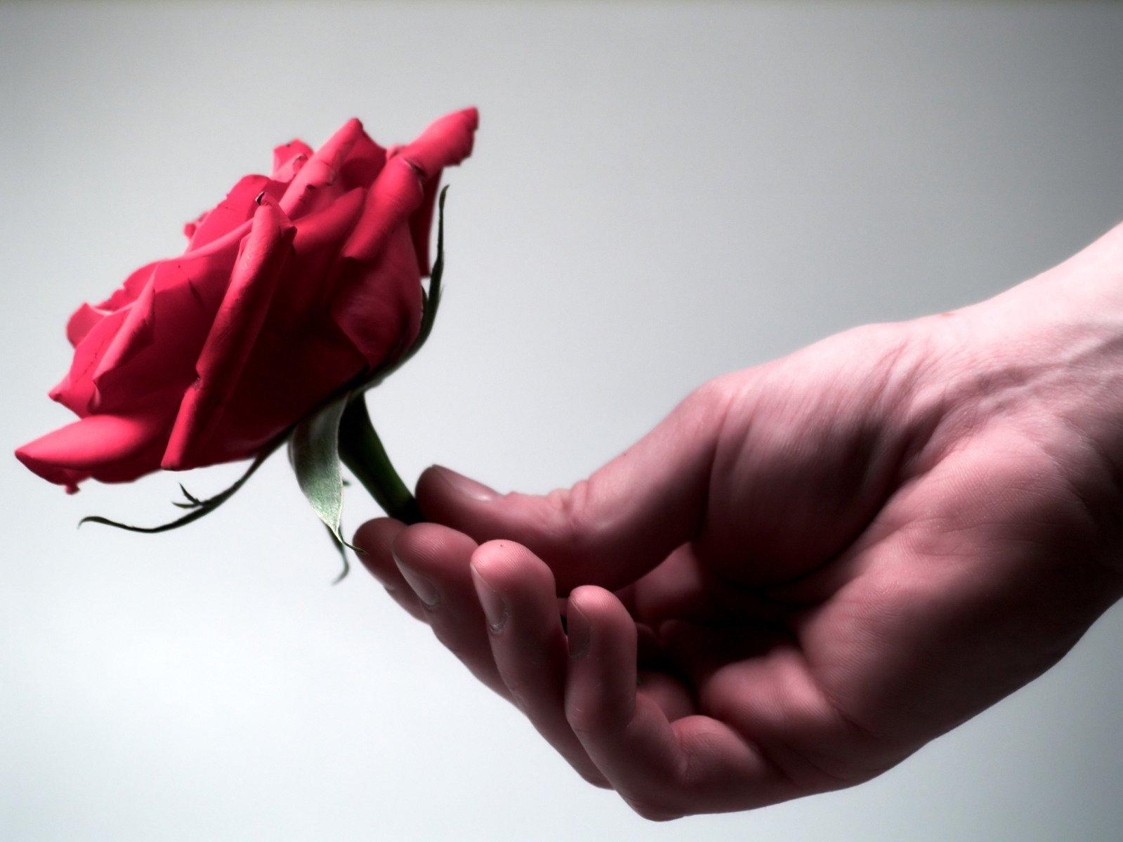 Открытки со словами прощения у любимого человека, обьяснением любви