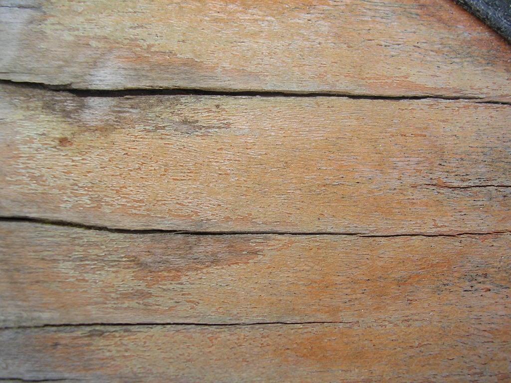Wood cracks 1