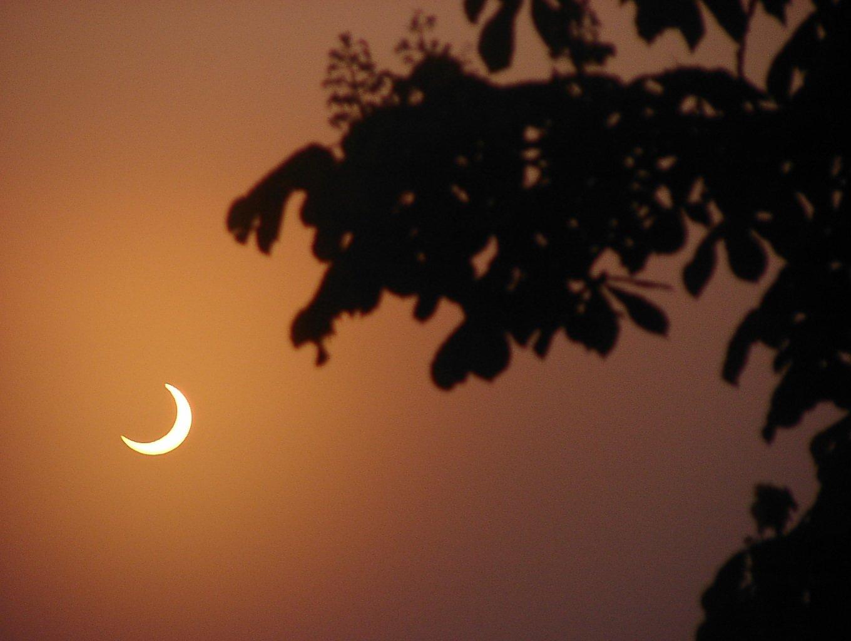 Затмение солнца 2017 произойдет 21 августа