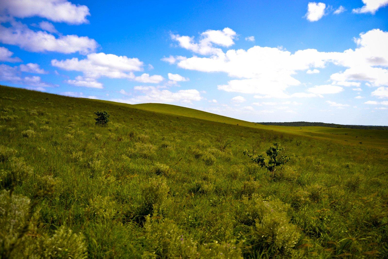 Free sunny landscape stock photo for Sunny landscape designs
