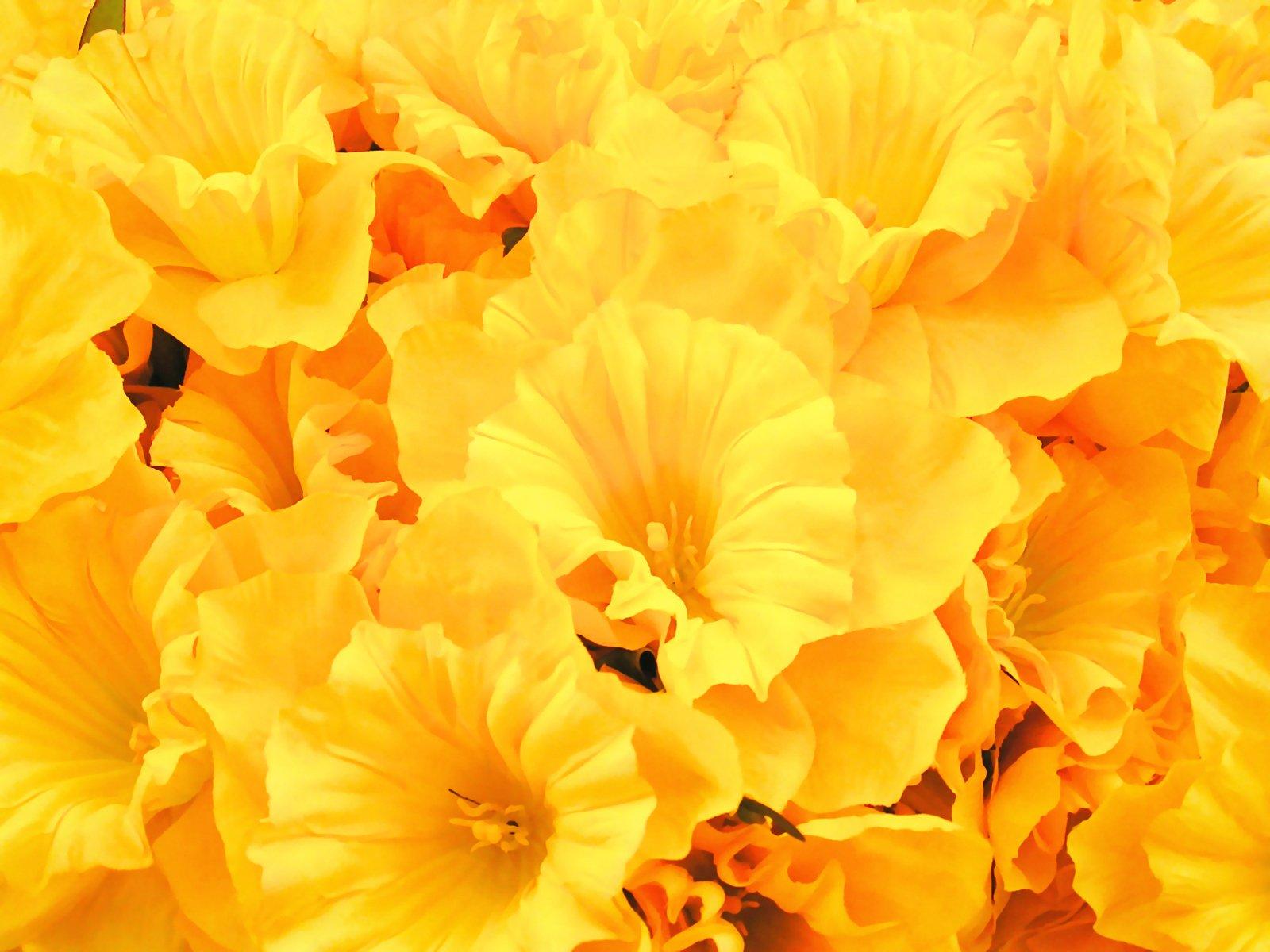 Faux Sunny Daffodils