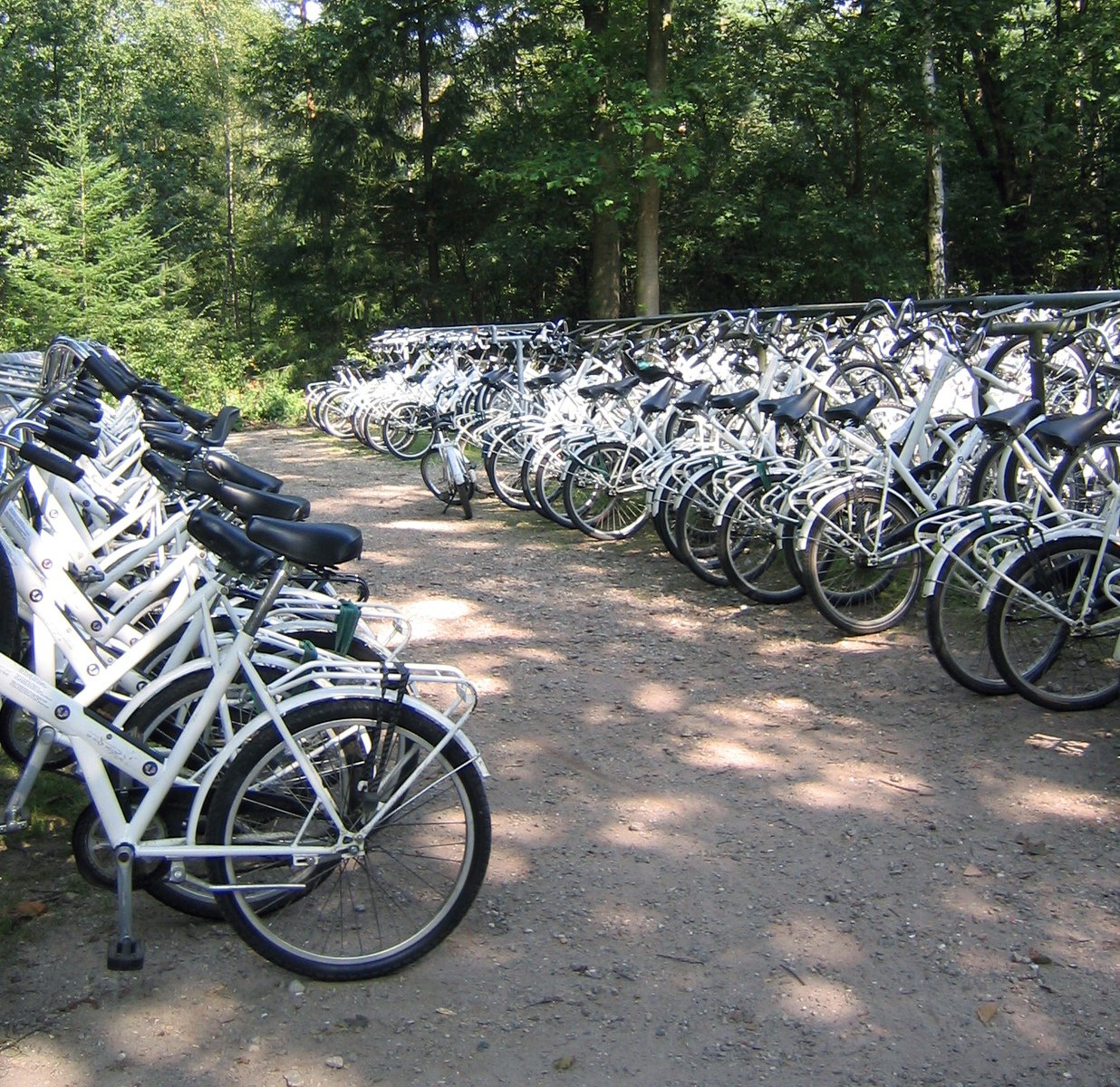 Free White Bicycles Stock Photo Freeimages Com