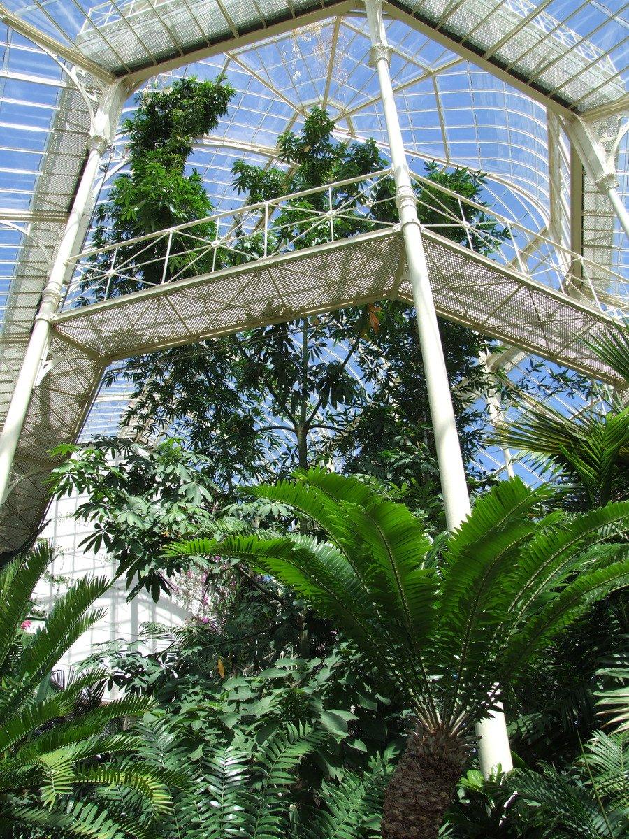Free Botanical Garden Dublin Stock Photo