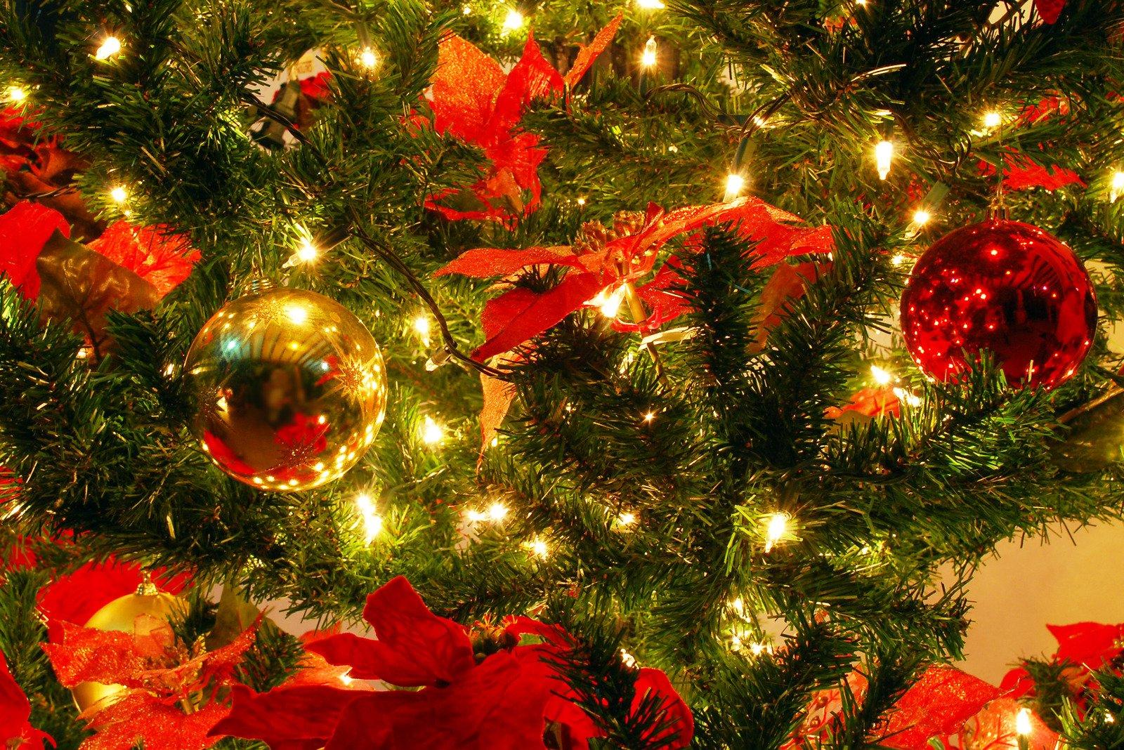 Immagini Natalizie Gratuite.Foto Stock D Archivio Serie Di Natale Gratuite Freeimages Com