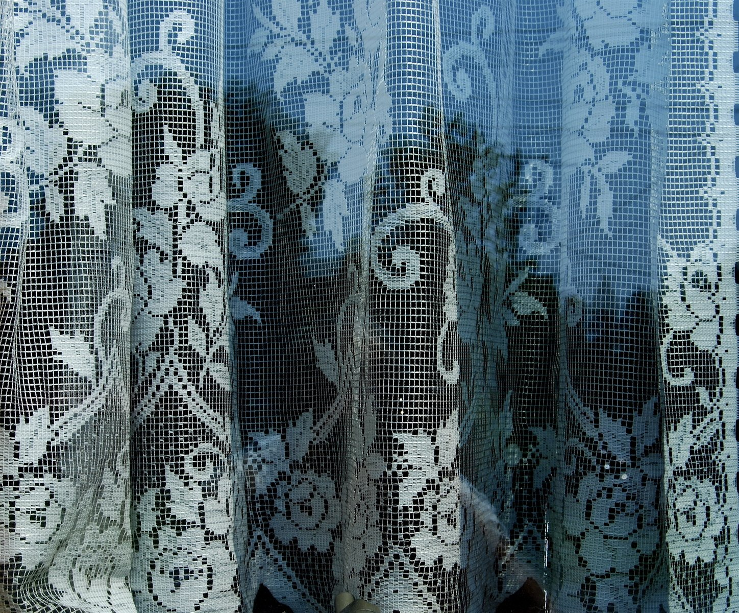 free lace curtain in window stock photo