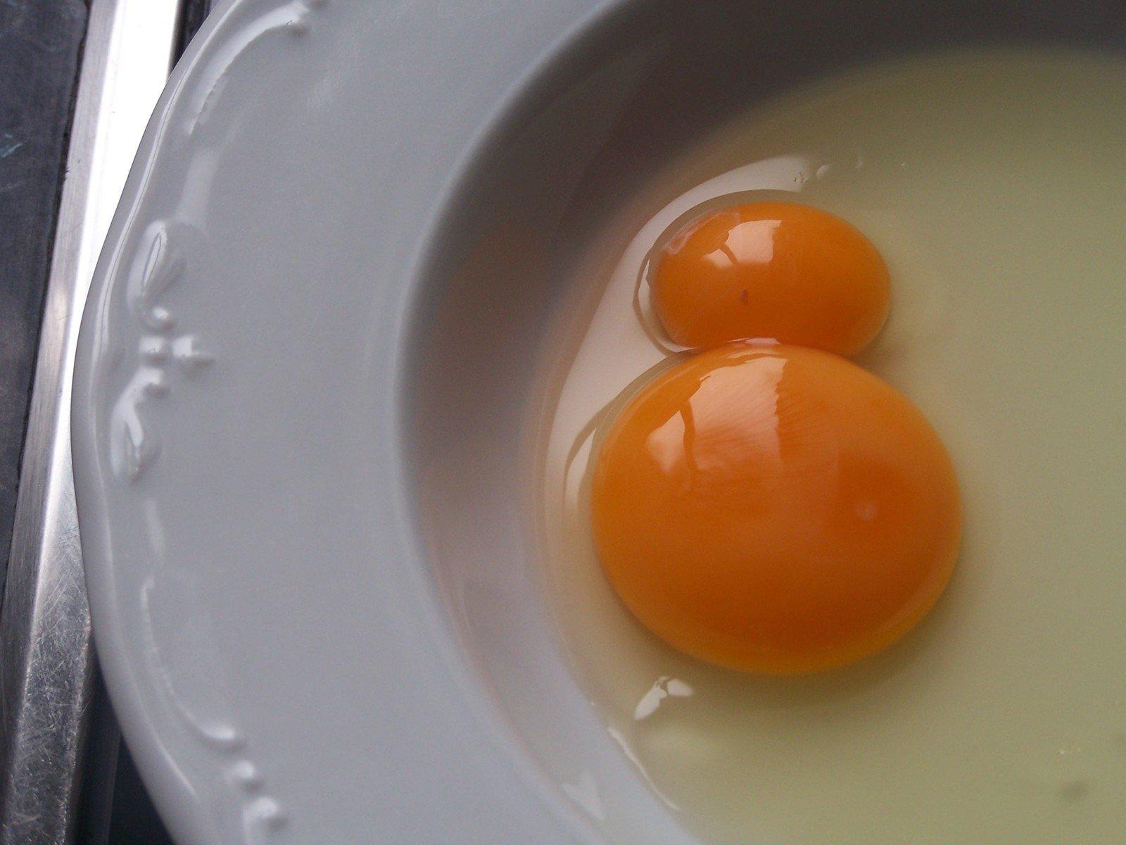 еда желток яйца food the yolk eggs  № 2999755 бесплатно