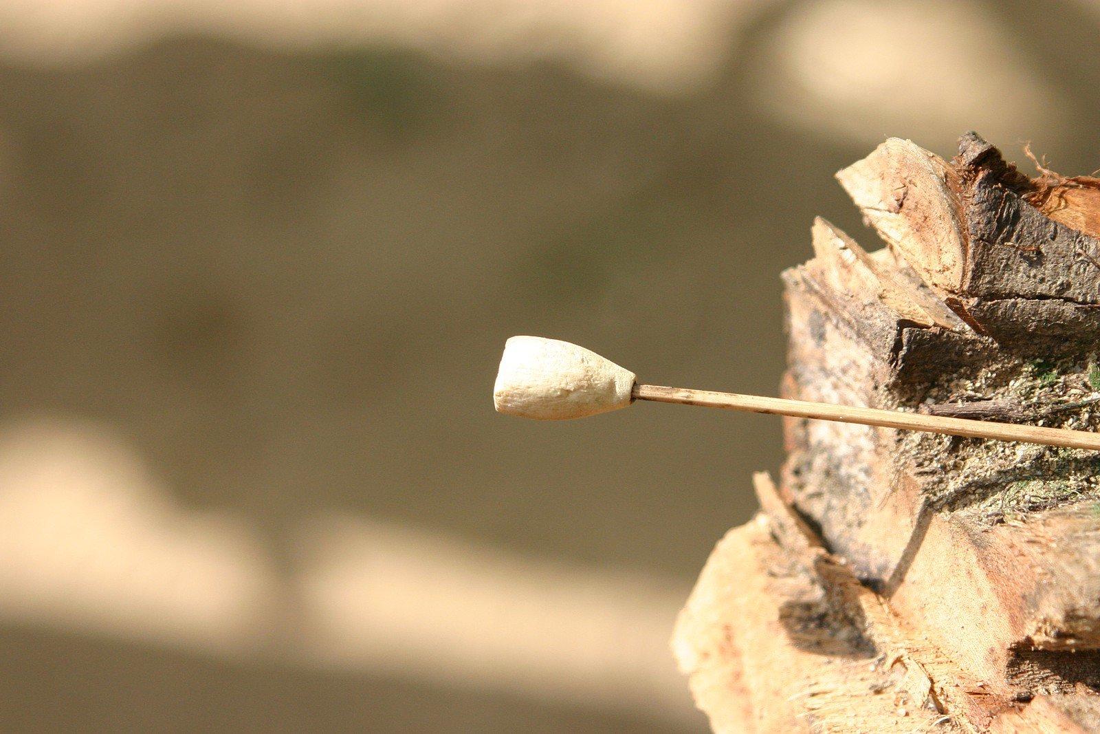 Taman Negara - Blowpipe dart f
