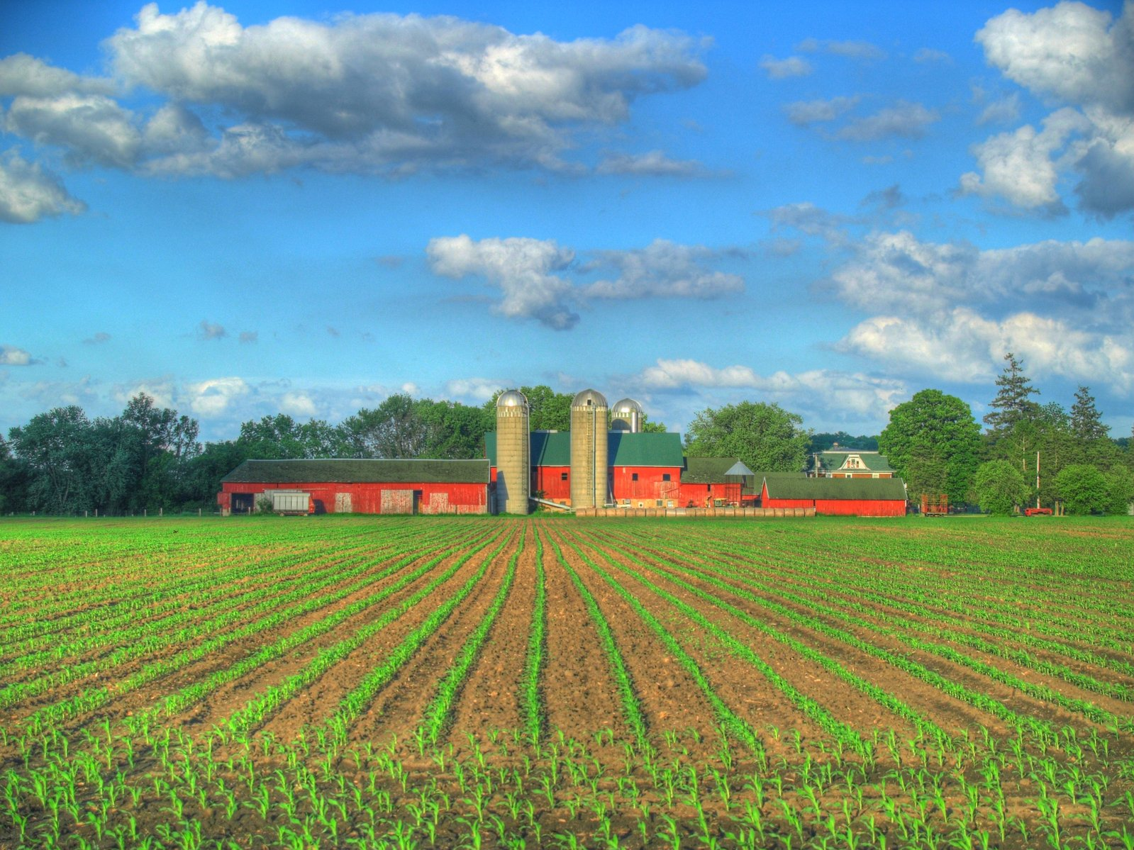 Free Farm In Spring Stock Photo Freeimages Com