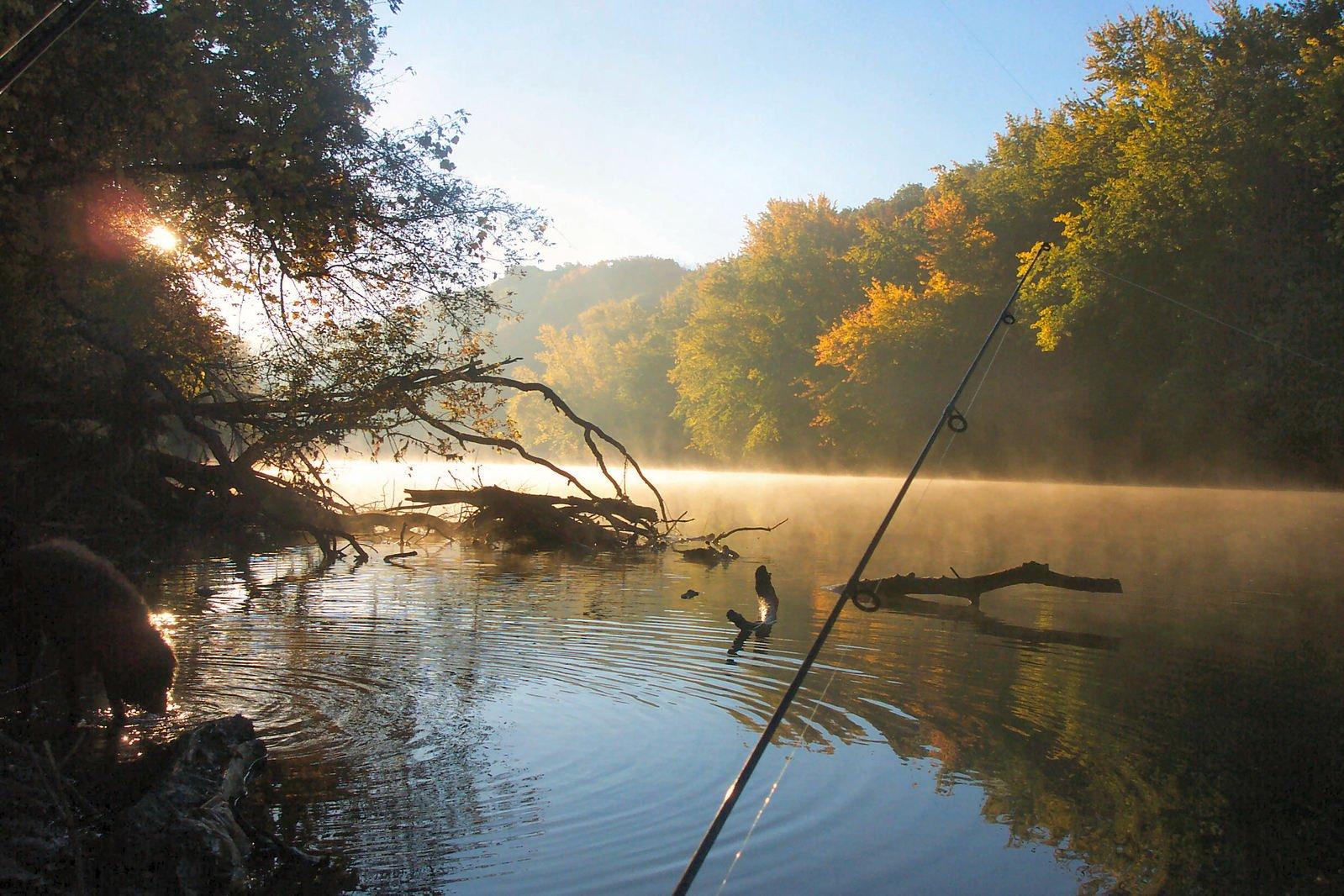 Картинка природы на рыбалке