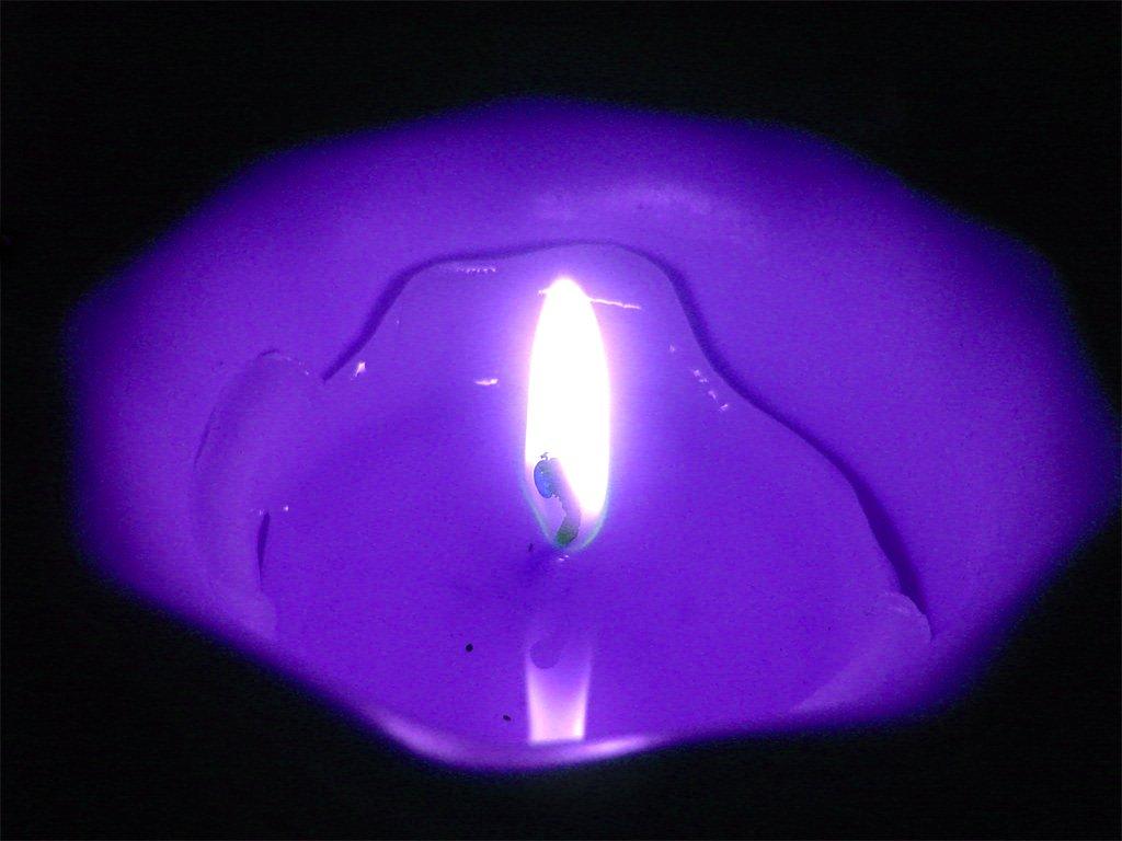 Resultado de imagen para llama violeta
