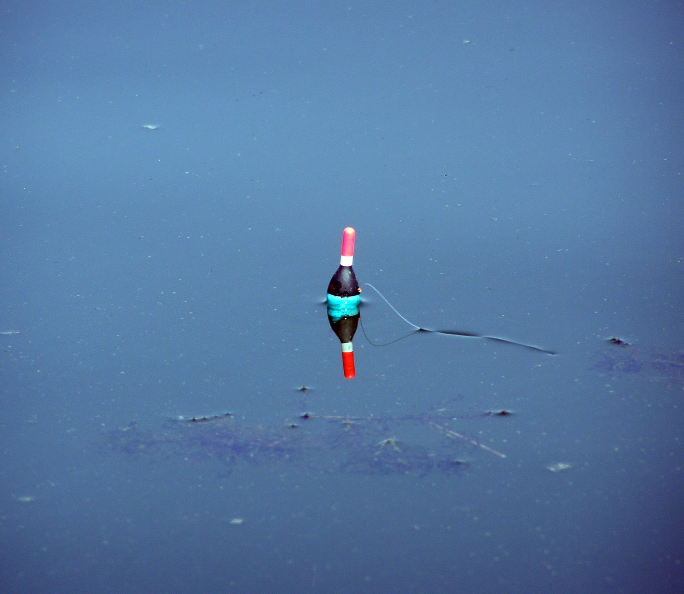 Free fishing float stock photo for Fishing for floaters game