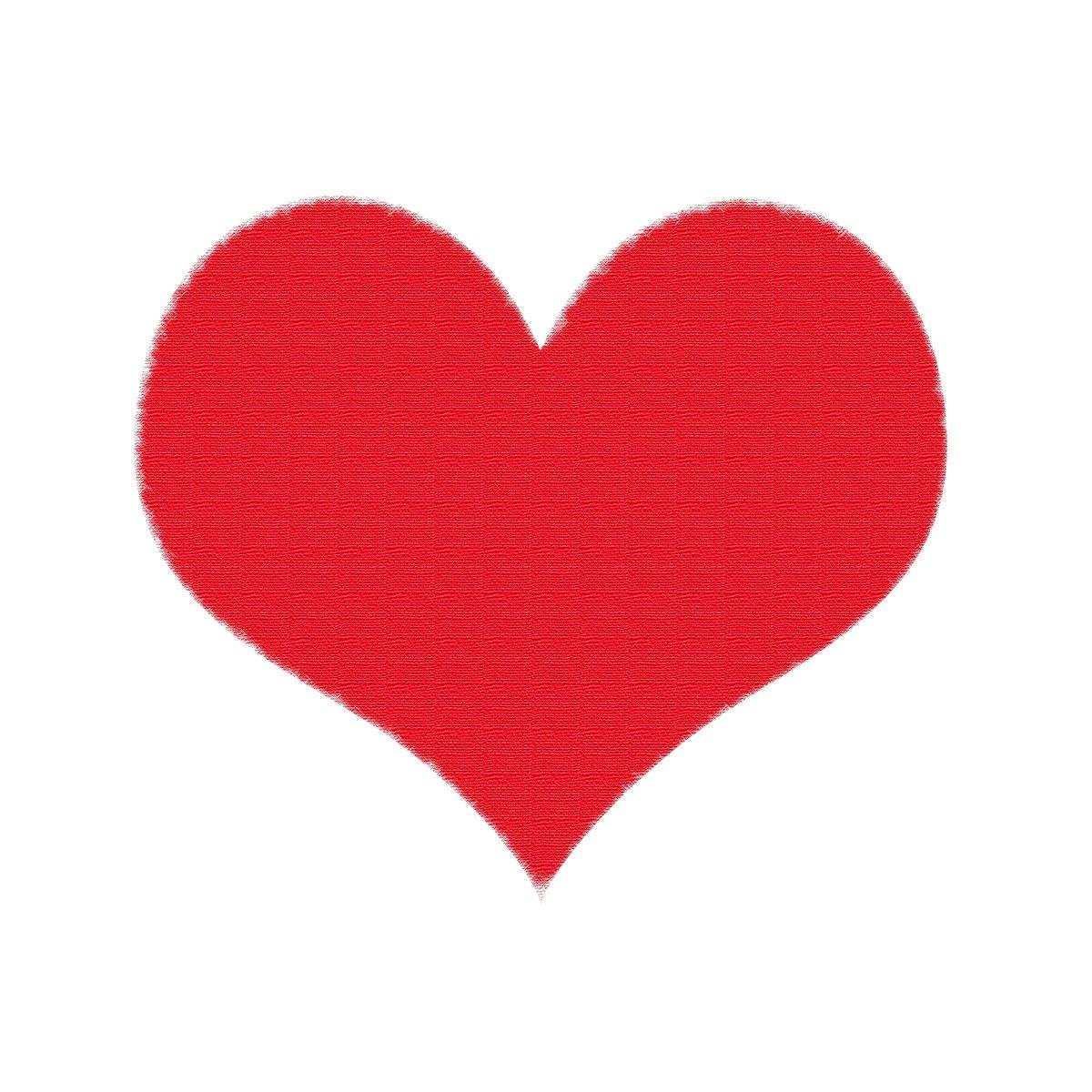 Free Kalp Tuval üzerine Yağlı Boya Stock Photo Freeimagescom