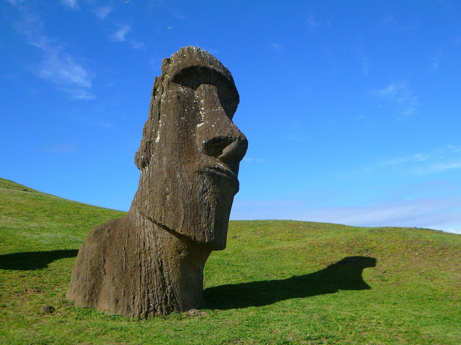 A Moai in a field on Rapa Nui