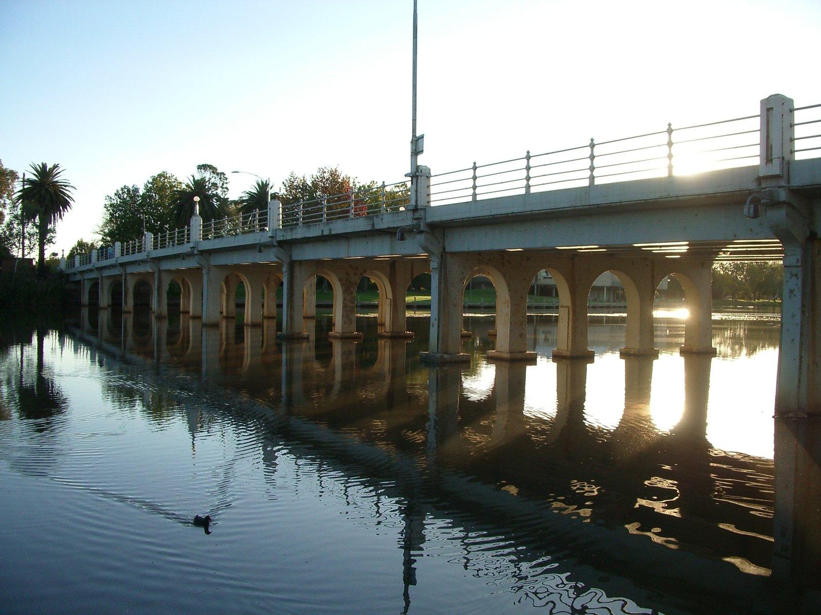 Serenity,bridge,duck,town