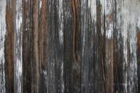 Old weathered woodgrain