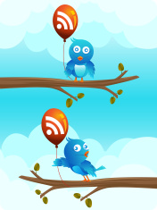 birds with rss baloons