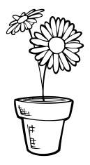Potted Daisy - Line Art