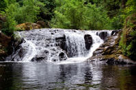 Sweet Creek Falls waterfall in Oregon