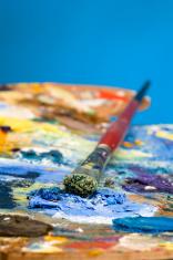 Oil paint palette