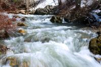 River during Spring