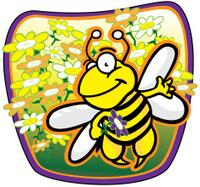 Honey bee image