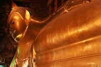Giant Reclining buddha within the Wat Pho in Bangkok, Thailand.