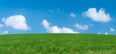 Panoramic spring landscape 56MPix XXXXL size - meadow, blue sky