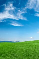 Panoramic spring landscape 30MPix XXXXL size - meadow, blue sky