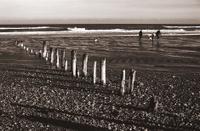 People walking on beach