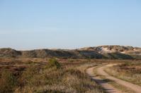 Through the Heath to Raabjerg Mile - Denmark