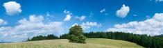 Panoramic spring landscape 86MPix XXXXL size - meadow, blue sky
