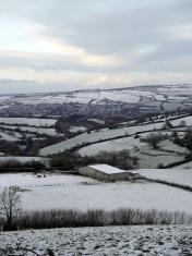 White Christmas in Devon