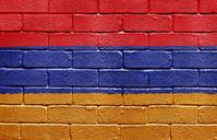 Flag of Algeria on brick wall
