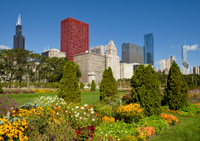 Downtown Chicago with Sears Tower and Grant Park