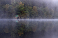 Mist on Loch Ard, near Aberfoyle, Scotland.