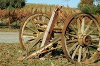 Cart Wheels in Vineyard