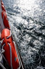 looking at sea