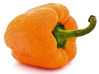 old wrinkled orange paprika