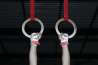 Gymnastic rings