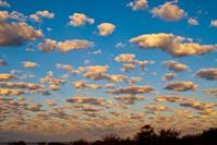 Western Australian Cloudscape