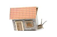 Snail in Dollhouse