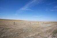 Prairie Series