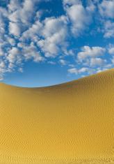 Sand dune (image size XXL)