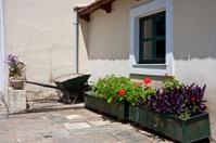Wheelbarrow and Planter Boxes