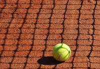 Tennis ball on  floor
